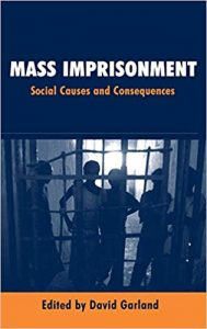 Mass Imprisonment: Social Causes and Consequences Ebook
